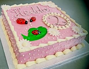 Geburtstagstorte_2